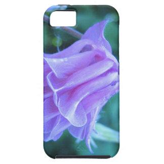 Aquilegia Macro Flower iPhone 5 Cover