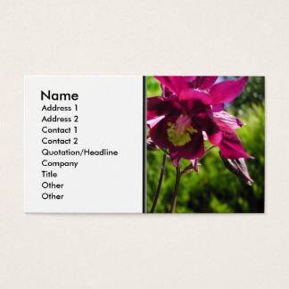 Aquilegia. Plum purple flowers. Business Card