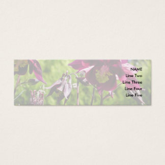 Aquilegia. Plum purple flowers. Mini Business Card