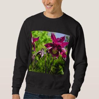 Aquilegia. Plum purple flowers. Sweatshirt