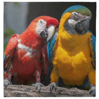 ara ararauna parrot on its perch napkin
