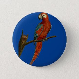 Ara red parrot 6 cm round badge