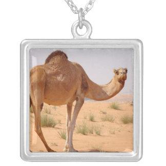 Arab Camel Necklace
