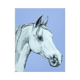 Arab Horse Pencil Portrait on Blue Background