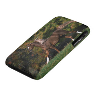 Arab Horse Running in Grassy Field iPhone 3 Case