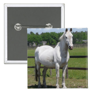 Arab Horse Square Pin