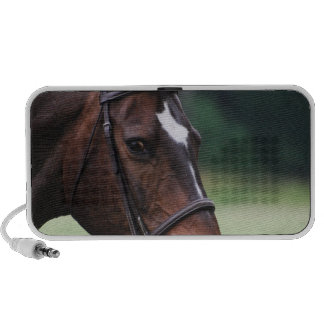 Arab Horse with White on Face Portable Speakers