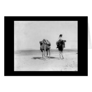 Arab Riding His Camel in the Desert 1910 Greeting Card