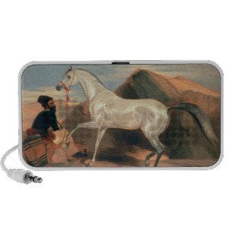 Arab Stallion Travelling Speaker