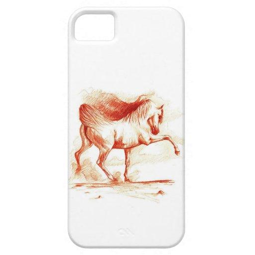 Arabian iPhone 5 Cases