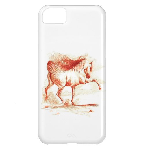 Arabian iPhone 5C Cases