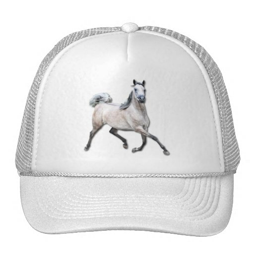 Arabian Horse - Alia Hat