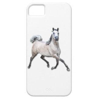 Arabian Horse - Alia iPhone 5 Cover