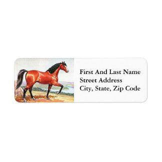 Arabian Horse Brown Bay Vintage Painting Return Address Label