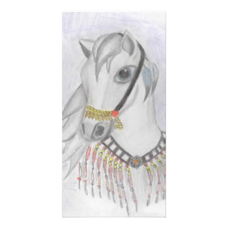 Arabian Horse in Indian Costume in Color Pencil Photo Card