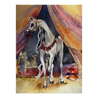 Arabian Horse In The Tent Poster Print
