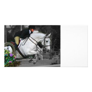 Arabian Horse Jumping Picture Card