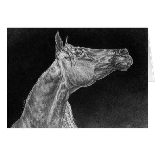 Arabian Horse Portrait Drawing by Kelli Swan Card