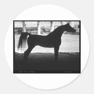 Arabian Horse Silhouette Black and White Round Sticker