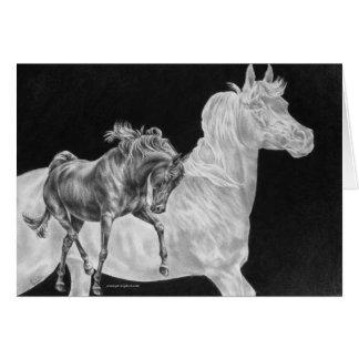 Arabian Horse Spirit Drawing by Kelli Swan Card