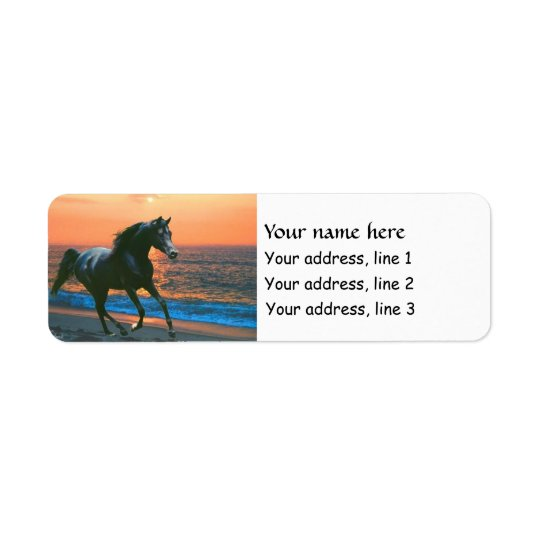 Arabian Horse Stallion Address labels