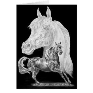 Arabian Horses Montage Drawing by Kelli Swan Card