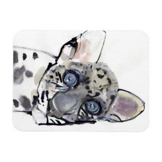 Arabian Leopard 2008  3 Rectangular Photo Magnet