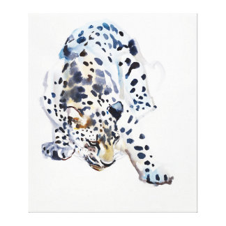 Arabian Leopard 2008  5 Stretched Canvas Print