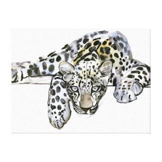 Arabian Leopard 2008  6 Canvas Print