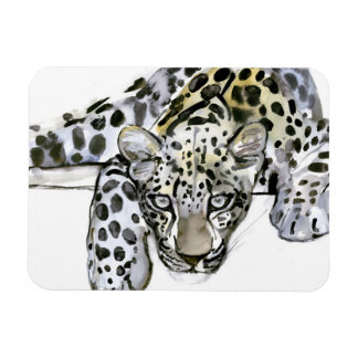 Arabian Leopard 2008  6 Rectangular Photo Magnet