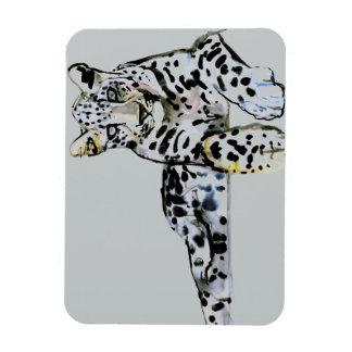 Arabian Leopard 2008  7 Rectangular Photo Magnet