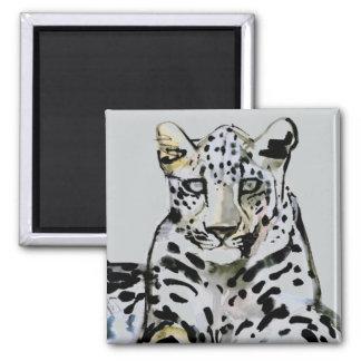 Arabian Leopard 2008  7 Square Magnet