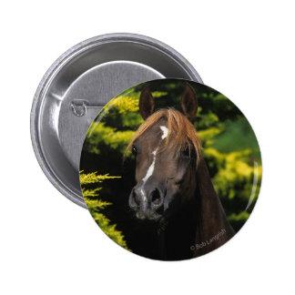 Arabian Stallion 6 Cm Round Badge