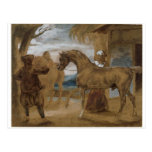 Arabian Stallion led by two Arabians to breed Postcard