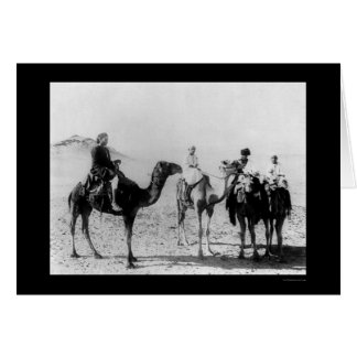 Arabs on Camels in the Sahara Desert 1914 Greeting Card