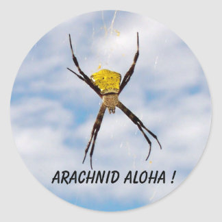 Arachnid Aloha Hawaiian Garden Spider Classic Round Sticker
