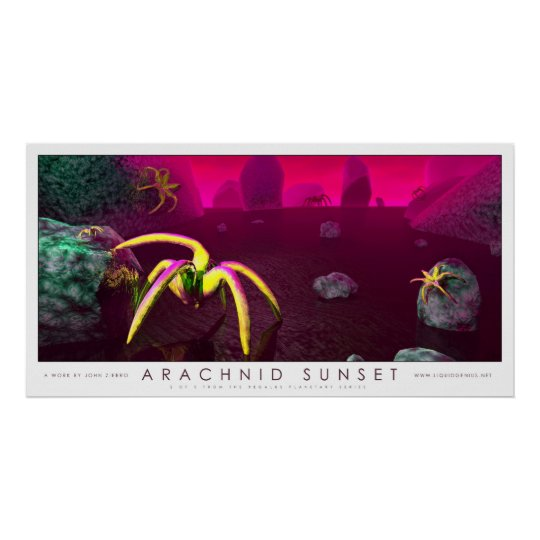Arachnid Sunset Poster