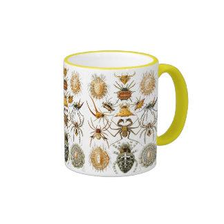 Arachnida (Spiders), Ernst Haeckel Mug