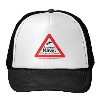 ARAFWCH CAP