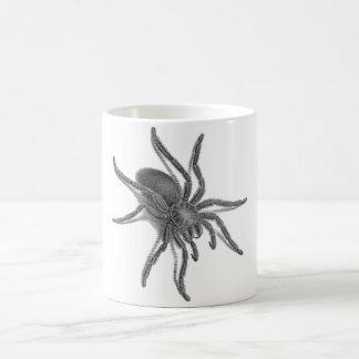 Aranea Avicularia, Black Cuban Spider Basic White Mug