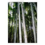 Arashiya Bamboo Forest Stationery Note Card