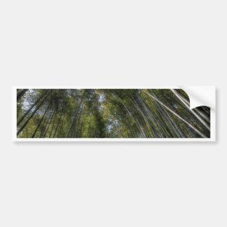 Arashiyama Bamboo Grove - Kyoto, Japan Bumper Sticker