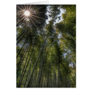 Arashiyama Bamboo Grove - Kyoto, Japan Card