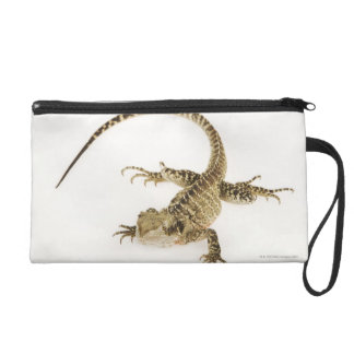 Arboreal agamid species native to Eastern 2 Wristlet Purse