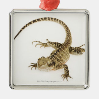 Arboreal agamid species native to Eastern 2 Christmas Ornament