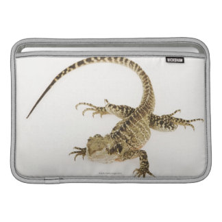 Arboreal agamid species native to Eastern 2 Sleeve For MacBook Air