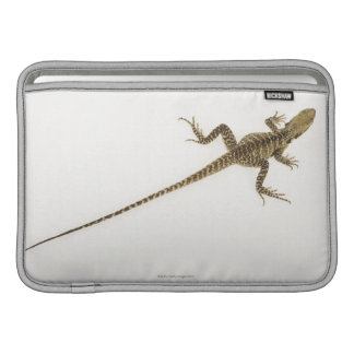 Arboreal agamid species native to Eastern MacBook Sleeve