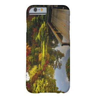 Arboretum, Japanese Garden, Seattle, Washington, Barely There iPhone 6 Case