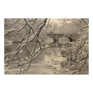 Arch Bridge over Frozen River in Winter Wood Wall Decor