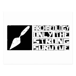 Archaeology Survive Postcard